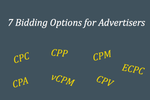 7 Bidding Options for Advertisers