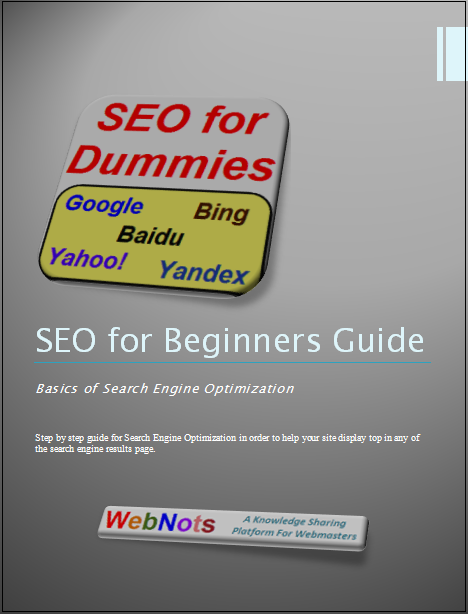 DO It Yourself SEO Guide for Beginners