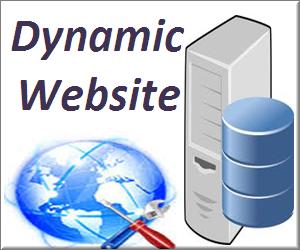 Basics of Dynamic Websites