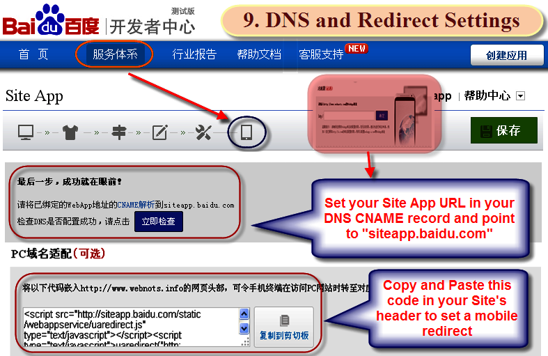 DNS and Redirect Settings