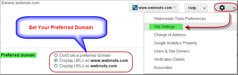 Google Preferred Domain Settings