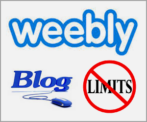 Limitations of Free Weebly Blog