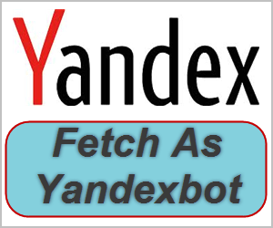 What is Server Response Check in Yandex Webmaster Tools?