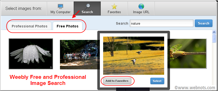 Weebly Professional and Free Image Search