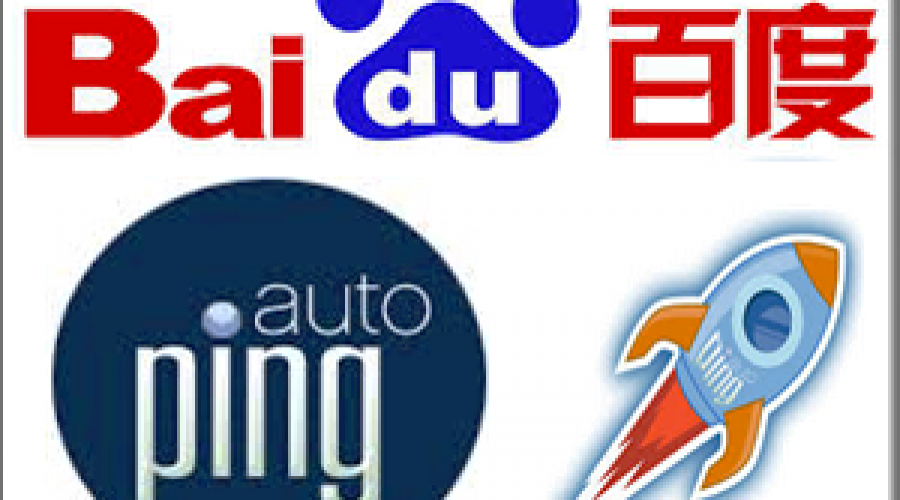 What is Baidu Auto Ping Service?