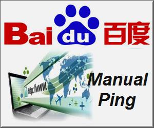Baidu Manual Ping Service