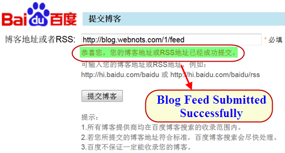 Success Message in Baidu Ping