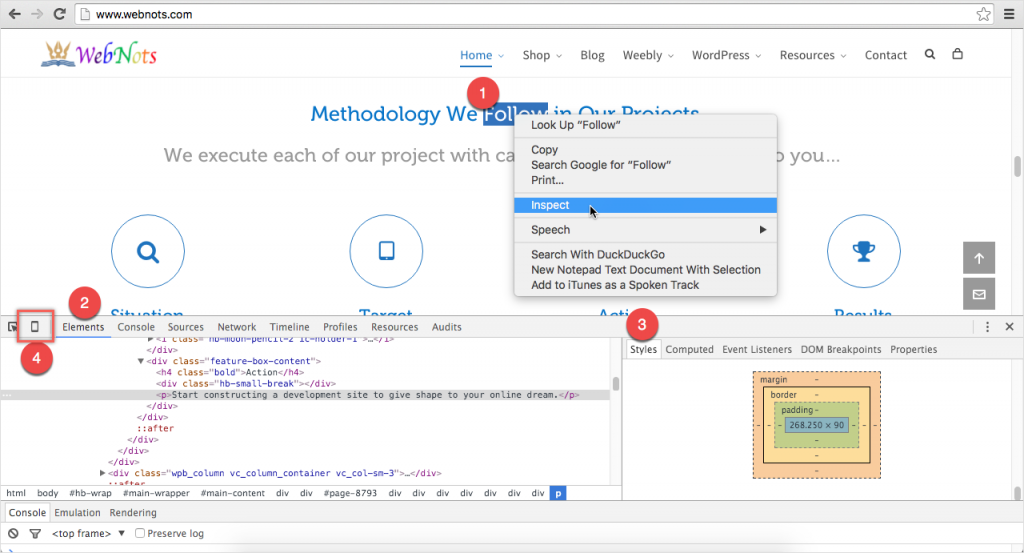 Developer Tools in Google Chrome to View Page Source