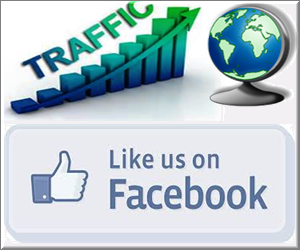 Facebook Like Button Traffic