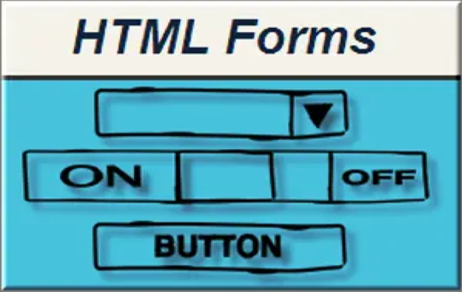 How to Create Forms in HTML?