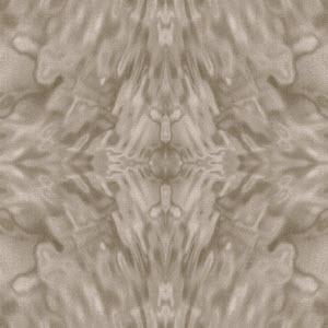 Symmetric Texture (43)