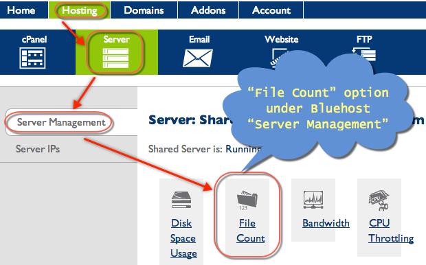 File Count Option under Bluehost Server Management