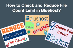 How to Check and Reduce File Count Limit in Bluehost?