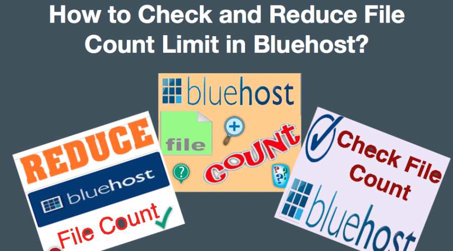 How to Check and Reduce Bluehost File Count Limit?