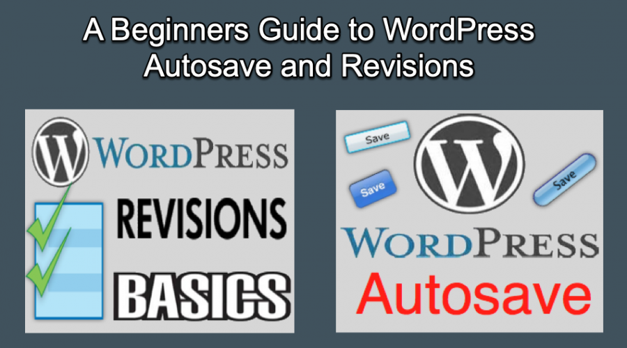 A Guide to WordPress Autosave and Revisions
