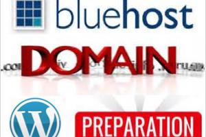 Bluehost Domain Setup for WordPress