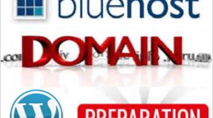 How to Prepare Bluehost Domain for WordPress Installation?