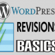 What is WordPress Revisions?