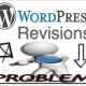 General WordPress Revisions Issues