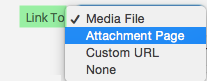 Attachment Link To Options in WordPress