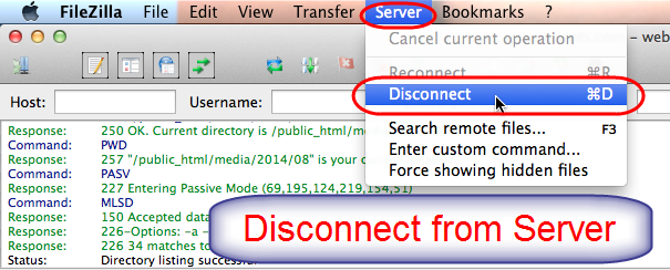 Disconnect Server in FileZilla