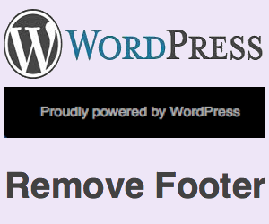 Remove WordPress Footer Message