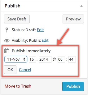 Set Publish Date and Time