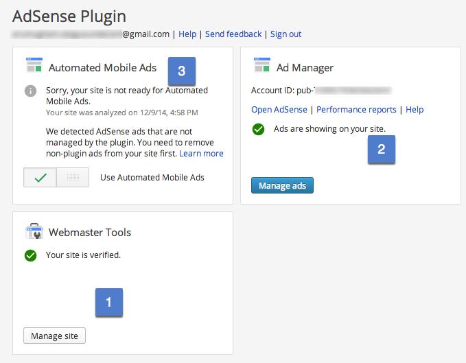 Параметры подключаемого модуля Google AdSense