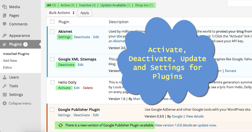 Installed Plugins View in WordPress