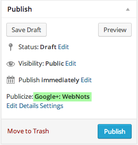Publicize View in WordPress Post Editor
