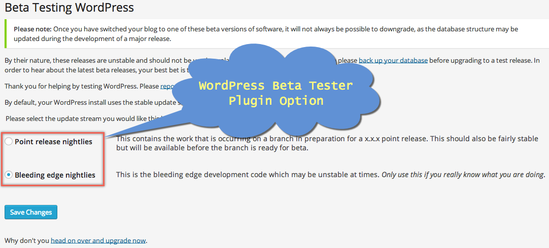 WordPress Beta Tester Plugin Option