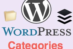WordPress Categories Management