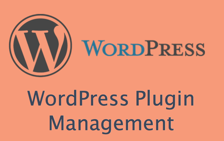 wordpress installing plugins manually