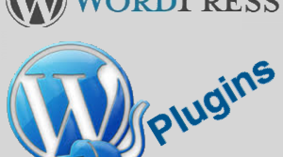 All You Should Know About WordPress Plugins?