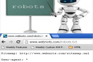Basics of Robots.txt