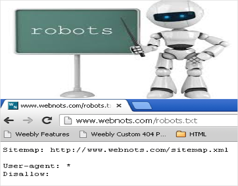 All You Need to Know About Robots.txt File