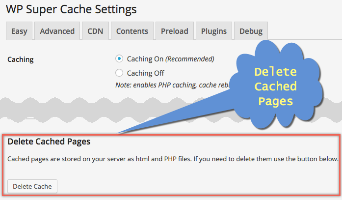Deleting Cached Pages in WP Super Cache Plugin