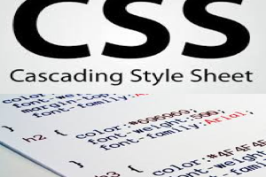 Add CSS to Your Website