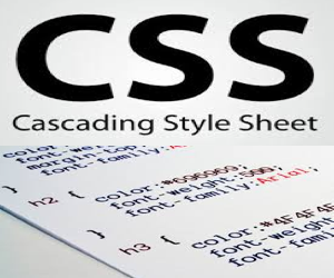 How to Add CSS in Your Website?