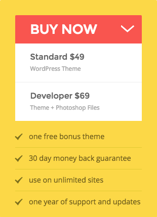 Buying WordPress Theme
