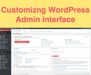 6 Tips for Customizing WordPress Admin Panel Interface