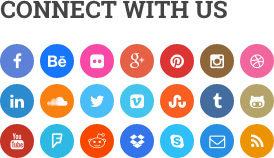 Integrated Social Icons in WordPress Theme