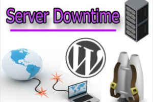 Monitor Downtime of a WordPress Site