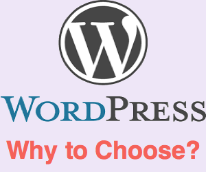 Why to Choose WordPress for Building Your Site?