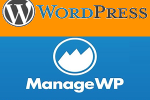 Manage Multiple WordPress Sites with ManageWP