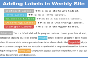 Add Text Label in Weebly Site