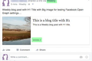 Shared Weebly Article in Facebook