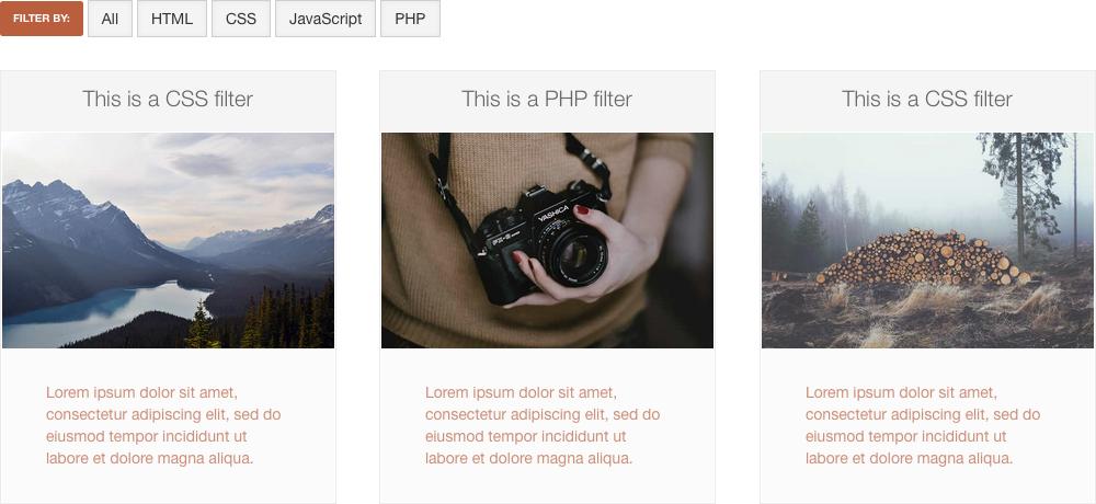 Weebly Portfolio Image Filter Widget