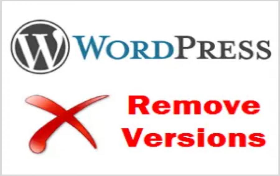 Remove WordPress Version