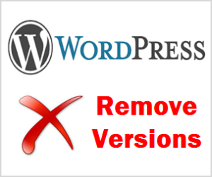 Remove WordPress Versions